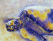 Sunning Turtle Print by Carolyn Jarvis