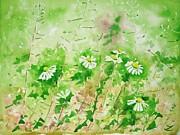 Sunny Daisies Print by Zaira Dzhaubaeva