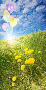 Colorful Dandelions Photos - Sunny field with balloons by Jo Ann Snover