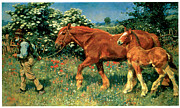 Filly Art Framed Prints - Sunny June Framed Print by Alfred Munnings