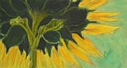 Sunny Side Up Print by Cori Solomon