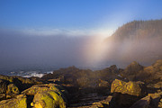 Down East Maine Photos - Sunray Illuminating Drifting Fog Bank at Gullivers Hole by Marty Saccone