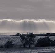 Clay Center Prints - Sunrays in Black and White Print by Tracy Salava