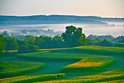 Cornfield Photos - Sunrise and Morning Fog by Joan McArthur