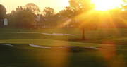 Azalea Pictures Prints - Sunrise at Augusta National Print by Bo  Watson
