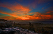 Sunrise At Bear Rocks In Dolly Sods Print by Dan Friend