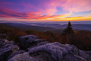 Bear Rocks Prints - Sunrise at Dolly Sods in West Virginia Print by Jetson Nguyen