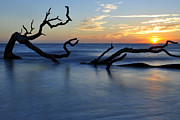 Beach Photographs Art - Sunrise at Driftwood Beach 7.3 by Bruce Gourley