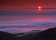 Pink Sunrise Photos - Sunrise At Hurricane Ridge by Tim Fitzharris