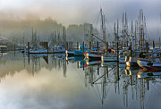 Fishing Art Cards Prints - Sunrise At Newport Harbor Print by Sandra Bronstein