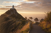 Otago Region Framed Prints - Sunrise at Nugget Point Otago New Zealand Framed Print by Colin and Linda McKie