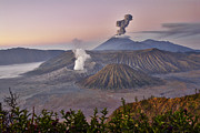 Asien Prints - sunrise at vulcano Bromo with sea of sand vulcano Semeru with eruption Java Indonesia Print by Juergen Ritterbach