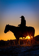 Sunrise Cowboy Print by Inge Johnsson