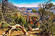 Thor Mixed Media Framed Prints - Sunrise from Yaki Point How Long Did it take Framed Print by Bob Johnston