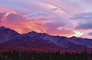 Photos Of Autumn Prints - Sunrise in Denali Print by Jeff Folger
