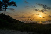 Deerfield Photos - Sunrise by Louis Ferreira