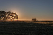 Saskatchewan Framed Prints - Sunrise North of Pense Framed Print by Steve Boyko