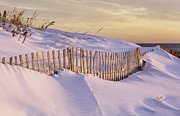 Betty Denise - Sunrise on Beach Fence