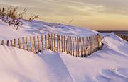 Betty Denise - Sunrise on Beach Fence