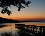 Cari Gesch Metal Prints - Sunrise on Bogue Sound Metal Print by Cari Gesch