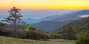 Gatlinburg Tennessee Prints - Sunrise on Roan Mountain Print by Yoder Images