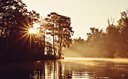 Louisiana Sunrise Posters - Sunrise on the Bayou Poster by Scott Pellegrin