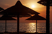 Sunshade Posters - Sunrise on the beach Poster by Jane Rix