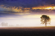 Michael Huddleston - Sunrise on the farm with...