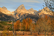 Canon 7d Framed Prints - Sunrise on the Grand Tetons Framed Print by Donna Kennedy