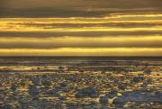 Dark Skies Posters - Sunrise Over An Ice Filled Bay Of Poster by Robert Postma
