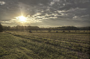 Conway Arkansas Prints - Sunrise Over Hayrolls Print by Jason Politte