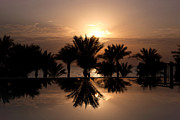 Sheikh Posters - Sunrise over infinity pool Poster by Jane Rix