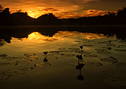 Jojie Alcantara - Sunrise over Lake of...