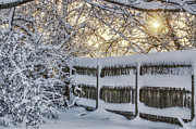 Winter Storm Photos - Sunrise Over Snowy Fence by Jason Politte