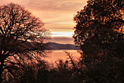 Cheryl Young Metal Prints - Sunrise over the Lake 2 Metal Print by Cheryl Young
