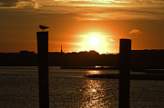 Orange Sky Posters - Sunrise Over Topsail Island Poster by Mike McGlothlen