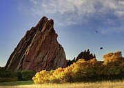 OLena Art - Sunrise Roxborough