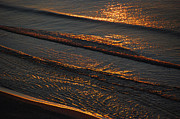 Lapping Prints - Sunrise Surf Print by Sean Holmquist