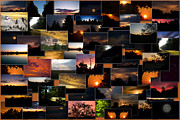 Coller Posters - SunRises and SunSets Collage Rectangle Poster by Thomas Woolworth