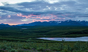 Tracey Hunnewell Framed Prints - Sunset 2 along the  Old Denali Highway Framed Print by Tracey Hunnewell