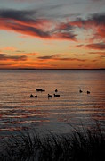 Sunset Framed Prints Framed Prints - Sunset 69 Framed Print by Joyce StJames