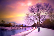 Snowy Evening Prints - Sunset along the River Channel Print by Tara Turner