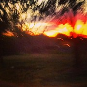 Photo  Paintings - Sunset and Trees by Genevieve Esson