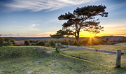 Starburst Prints - Sunset at Bratley View in the New Forest Print by Helen Hotson
