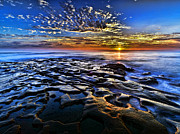 Rock Pyrography Posters - Sunset at La Jolla Tide Pools Poster by Peter Dang