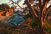 Big Sur Ca Posters - Sunset At McWay Falls Poster by Adam Jewell