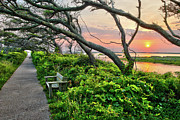 Pea Island Prints - Sunset at Pea Island Wildlife Refuge Outer Banks I Print by Dan Carmichael