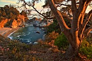 Big Sur Ca Metal Prints - Sunset At Pfeiffer Burns Metal Print by Adam Jewell
