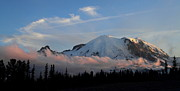 Mt Rainier National Park Prints - Sunset at Sunrise Print by Angie Vogel