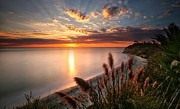 California Seascape Posters - Sunset at Swamis Beach 7 Panorama Poster by Larry Marshall